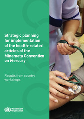 Results from country workshops on the strategic planning for implementation of the health-related articles of the Minamata Convention on Mercury