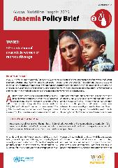 Global Nutrition Targets 2025: Anaemia policy brief
