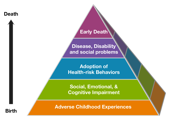 Adverse childhood experiences lead to impairment, adoption of risky behaviors, disease and early death.