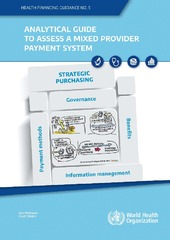 Analytical guide to assess a mixed provider payment system
